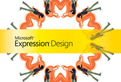 Expressiondesign